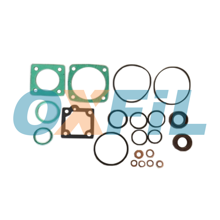 OGS.001 Gaskets / Rings / Valves Kits